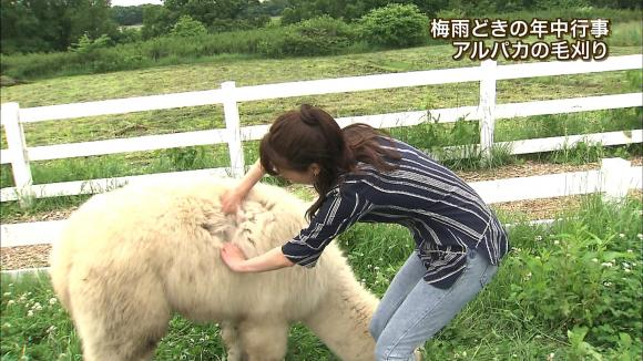 aoyamamegumi_20130626_29.jpg