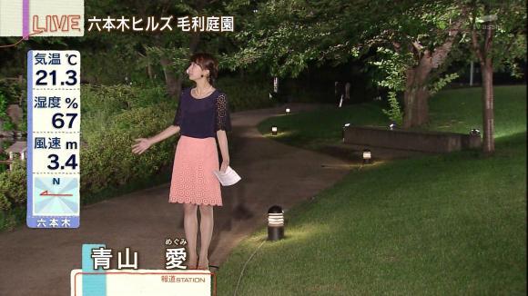 aoyamamegumi_20130627_09.jpg