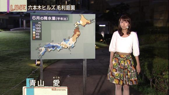 aoyamamegumi_20130702_07.jpg