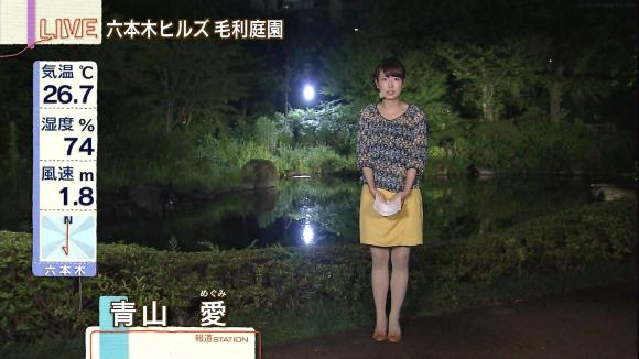 aoyamamegumi_20130708_06.jpg
