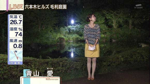 aoyamamegumi_20130708_07.jpg