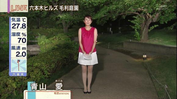 aoyamamegumi_20130709_11.jpg