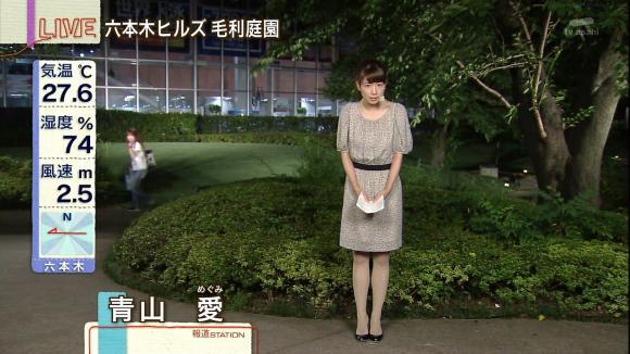 aoyamamegumi_20130711_02.jpg