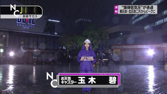 tamakiaoi_20130406_01.jpg