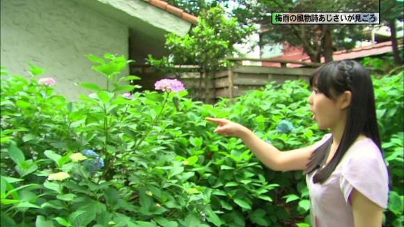 tamakiaoi_20130608_14.jpg