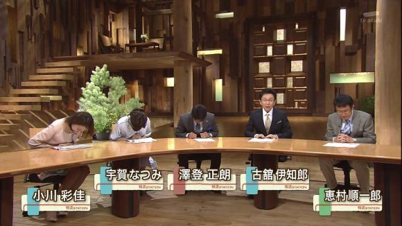 uganatsumi_20130605_02.jpg