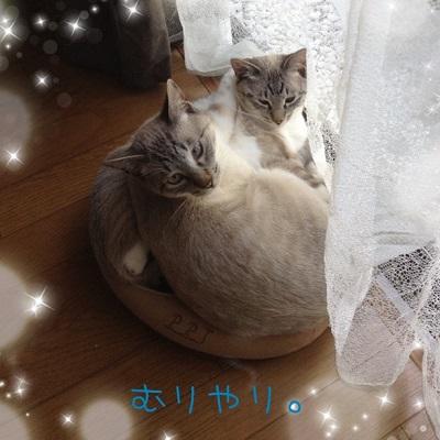 空と青-04