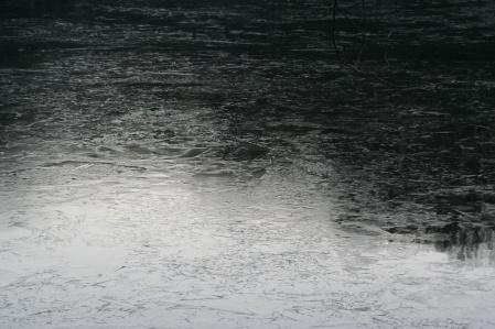 140116-1.jpg