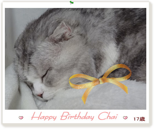 2013-chai-birthday.jpg