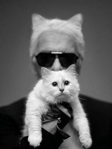 シャネル,猫,カール・ラガーフェルド