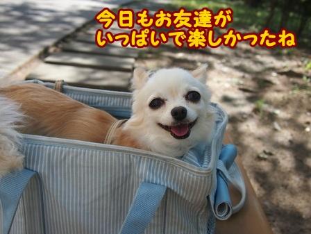 blog4424a.jpg