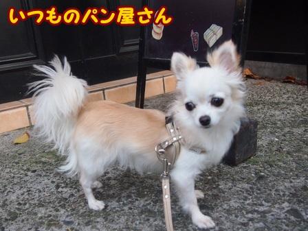 blog4546a.jpg
