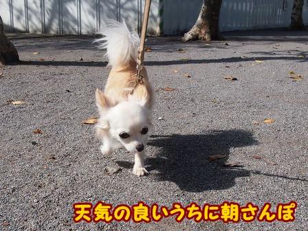 blog4591a.jpg