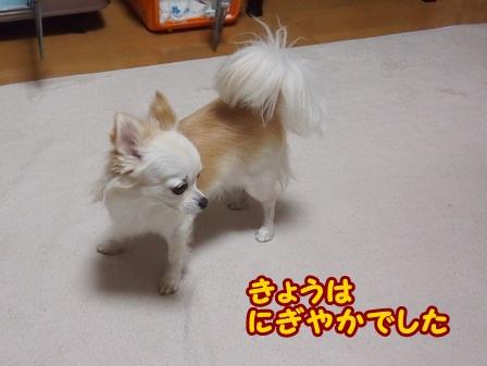 blog4630a.jpg