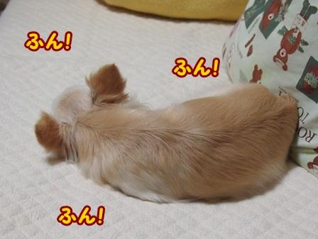 blog4671a.jpg