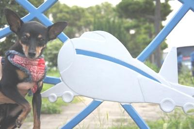 公園の柵にも飛行機