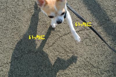 DSC_0613_convert_20131118103153.jpg