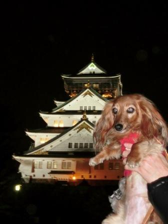 大阪城とライナ
