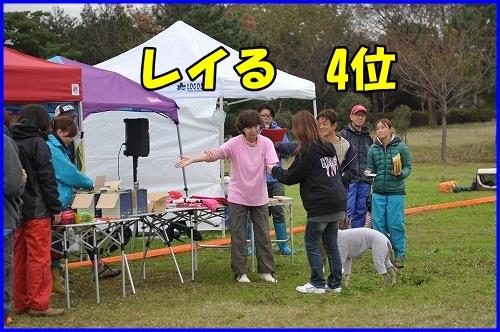 DSC_1334_201311110131576c3.jpg
