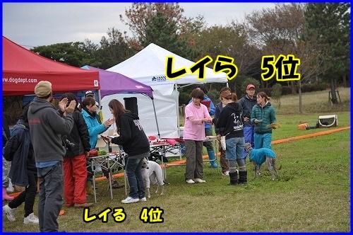 DSC_1335_201311110132499be.jpg