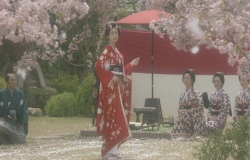 舞い散る桜をつかもうとする桜姫