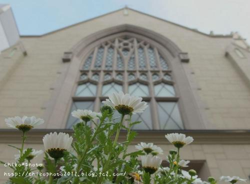 photo-312 お花の気分