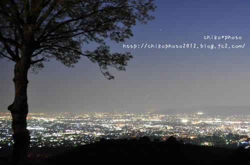 photo-294 若草山からの夜景1