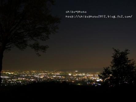 photo-295 若草山からの夜景2