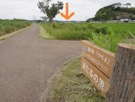 20130617ShinkawaCR-7.jpg