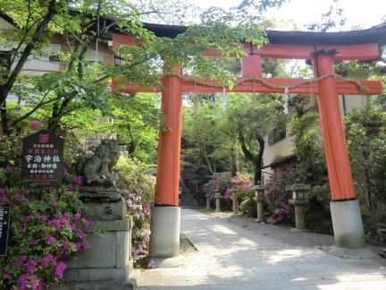 4宇治神社鳥居