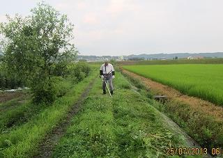 7・25農道草刈