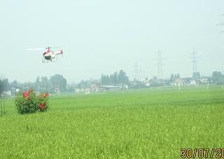 IMG_841ヘリコプター散布決定