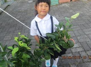 1年生の制服・T辺さんのふうかちゃん