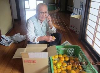 柿の荷造り