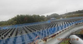 雨にけぶるブルーベリー園