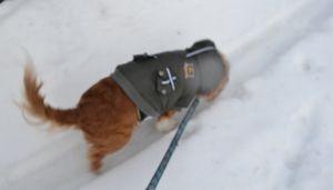 004雪の一本道