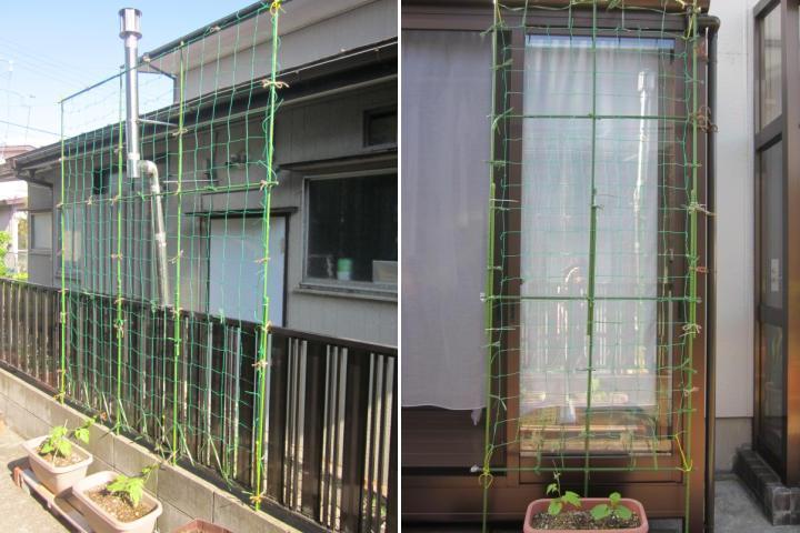 緑のカーテンのネット張り方で一戸建てやベランダ …