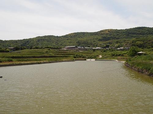 豊島美術館 (46)