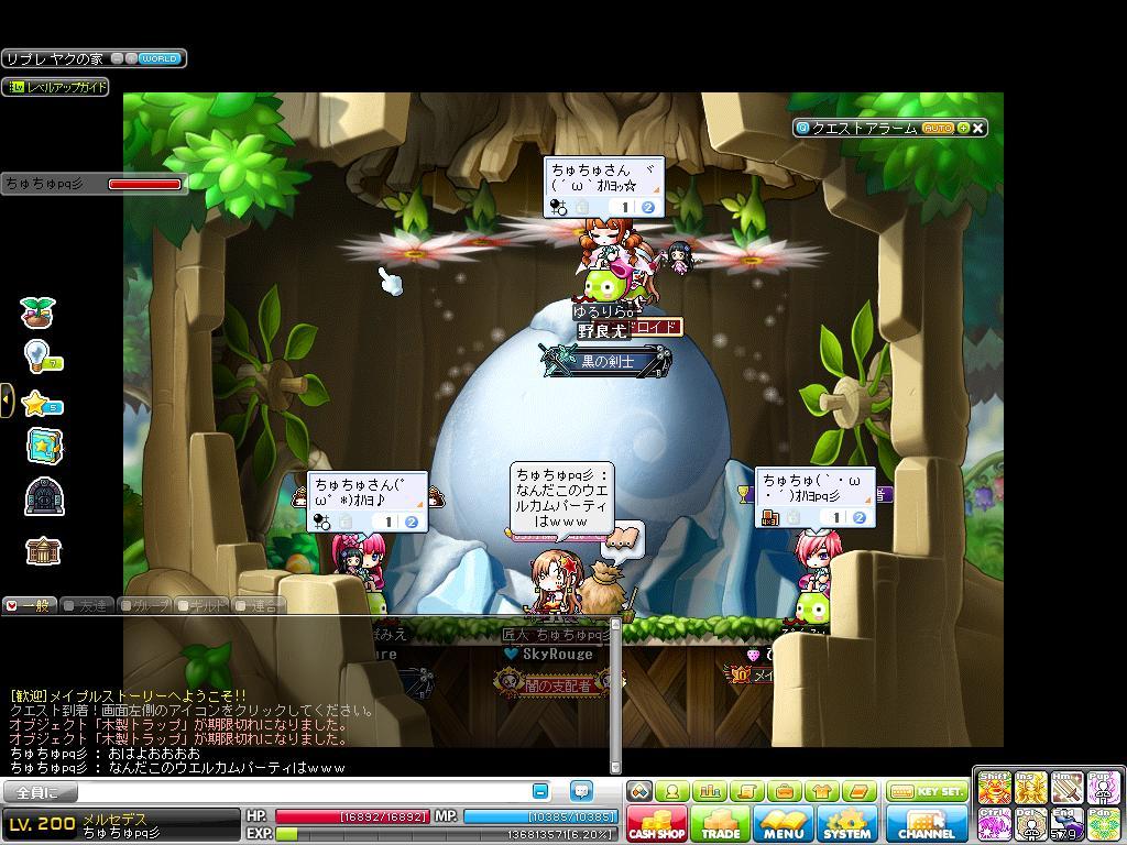 Maple131119_091511.jpg