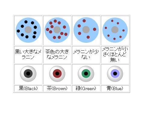 凜の目が赤い訳