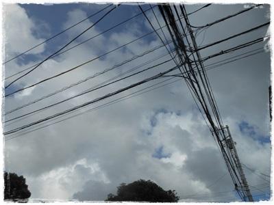 DSCN4168.jpg