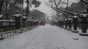 雪の日 東照宮