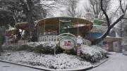 雪の日 動かないメリーゴーランド
