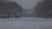 雪の日 動物園前