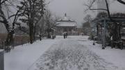 雪の日 弁天堂