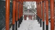 雪の日 花園稲荷の参道