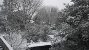 雪の日 静まり深まる湯島聖堂
