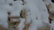 雪の日 雪に隠れた湯島の絵馬