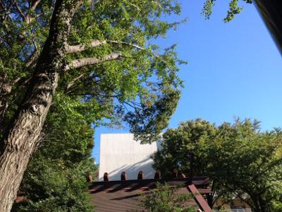 気象神社2013_3