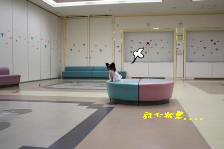 IMG_67b.jpg